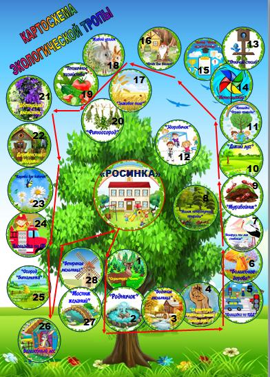 Наша экологическая тропа – тропа познаний и исследований!