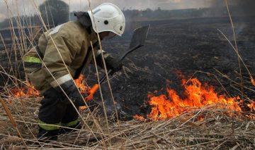 Требования пожарной безопасности для предупреждения загораний в экосистемах